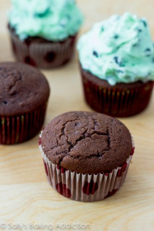 chocolate-cupcakes-with-mint-chocolate-chip-frosting-17